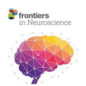 Neuroscience_290X290