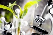 plant-science-generic