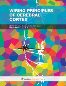 Cerebral cortex is probably the most complex biological network.