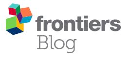 Frontiers Blog