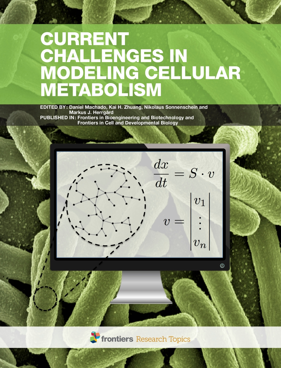 Current Challenges in Modeling Cellular Metabolism