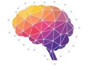MVA_Neuroscience