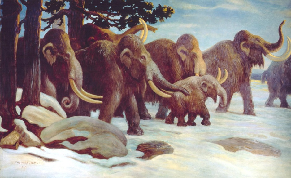 Mammoth_picture_1