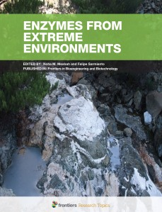 Enzymes from Extreme Environments