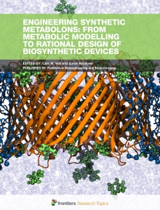 Engineering Synthetic Metabolons: From Metabolic Modelling to Ra