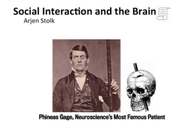 social-interaction-and-the-brain