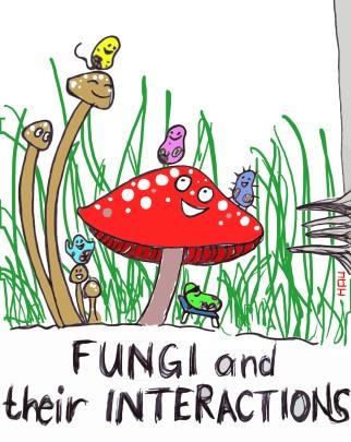 fungi-copy
