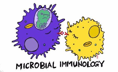 immunology-copy