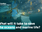 新的研究在海洋科学的前沿出版,弥补了决策者和科学家之间万博亚洲体育的差距,以确保可持续利用海洋。