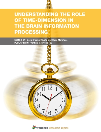 Understanding the Role of Time-Dimension in the Brain Informatio