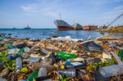 Scientific evidence now shows that our use and abuse of this environment is having a detrimental effect on marine habitats across the globe.