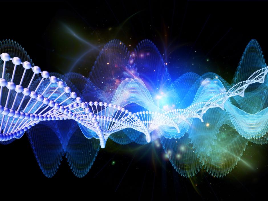 ASD-gene-interaction-cancer