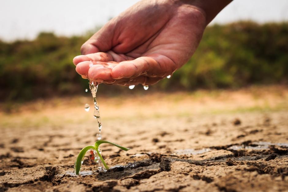 人工灌溉贫瘠的土地