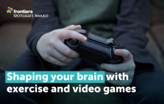 brain-video-games-exercise