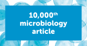 Frontiers in Microbiology David Hutchins article