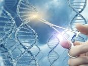 CRISPR/CAS9亨廷顿氏病