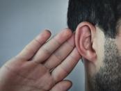 听力损失药物