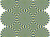 心理学上的神经系统:像是幻觉,像是幻觉一样