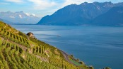 Frontiers in Environmental Science: High levels of hazardous chemicals found in plastics collected from Lake Geneva (Lac Leman)