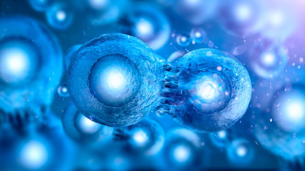 a research on the regenerative power of stem cell therapy Preclinical and clinical research have shown that stem cell therapy could be a   has cellular regenerative potential comparable to the regenerative power of the.
