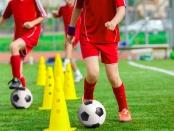 对年轻足球(足球)运动员进行的新的灵活性测试可能比传统的测量方法(如冲刺和跳跃能力)更精确:生理学的前沿万博亚洲体育