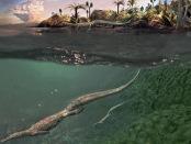 中龙属的图片:化石中龙属骨骼的综合分析表明,成人尸体标本也有类似的解剖学特征,以陆生动物:前沿生态与进化万博亚洲体育