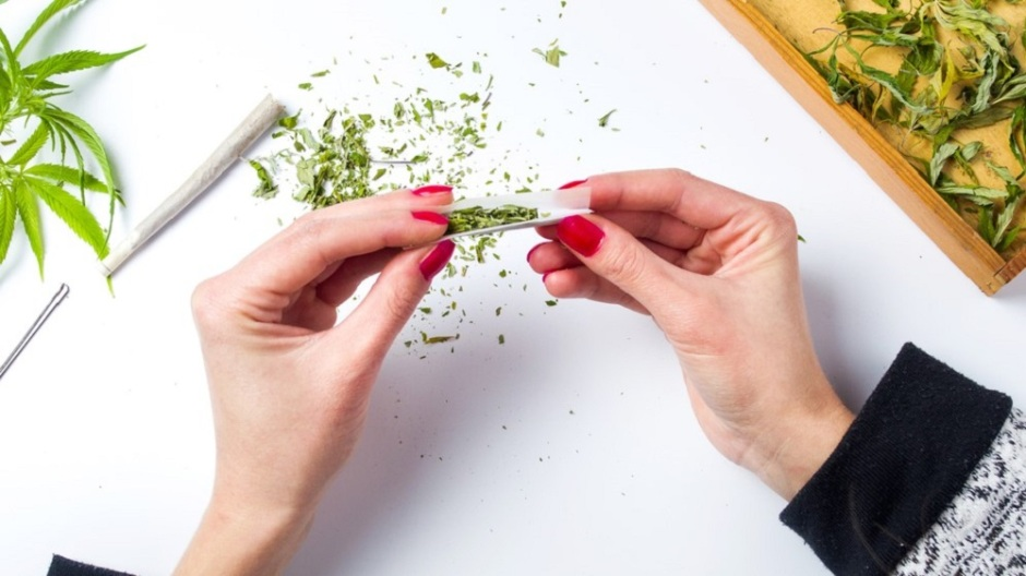 Frontiers in Behavioral Neuroscience: Females use and experience cannabis differently to males -- and neuroscience is beginning to explain why, says a new review