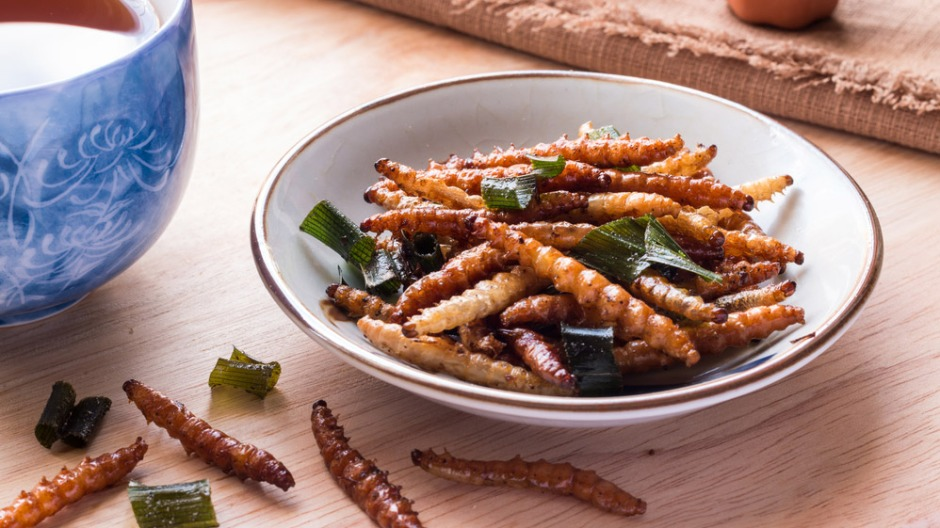 Image of fried insect larvae. Researchers find promoting the enjoyable aspects of insect-based food is more effective than highlighting health or environmental benefits: Frontiers in Nutrition