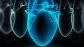 Digital human heart made of virtual wireframe. 3d illustration