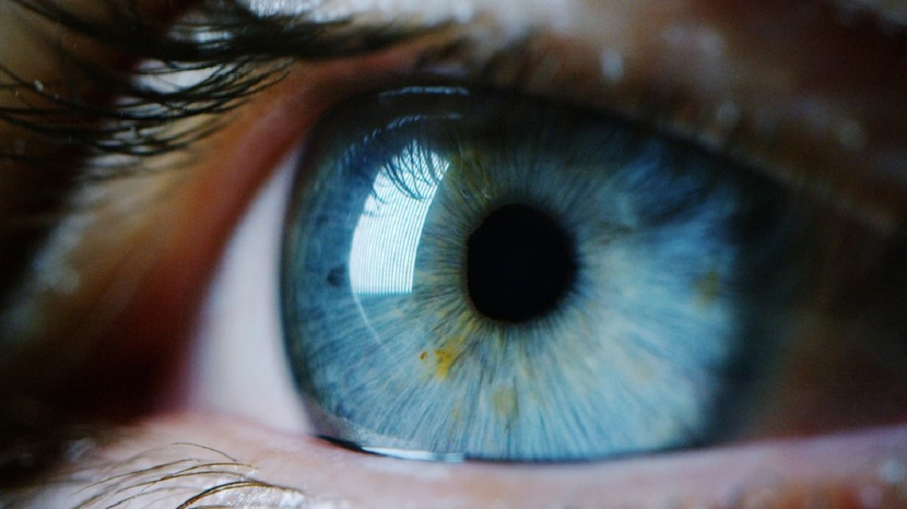 Frontiers in Human Neuroscience: A study has shown for the first time that computers can predict individuals' personality traits from their eye movements while engaged in everyday tasks.