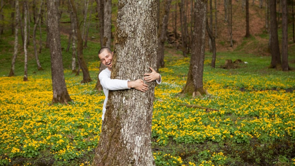 Frontiers in Psychology: People tend to judge their environmental impact using moral intuition that evolved to handle social exchange -- but these tree huggers may be doing more harm than good, say researchers