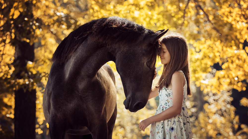 Image of young girl with horse. First-of-its kind research shows how brain-building exercises shared with horseback riding courses improves the motor skills of young people with neurodevelopmental disorders: Frontiers in Veterinary Science