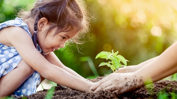 Image of young girl planting a plant in the forest. This connection encourages children to display more sustainable behaviors, which in turn gives them greater levels of happiness: Frontiers in Psychology