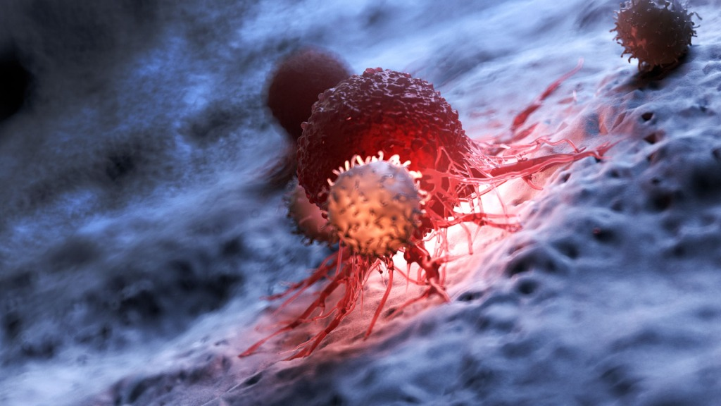 Rendering of a T-cell attacking another cell. Inflammatory immune response can cause T cells to become depleted, affecting patient outcomes in coronavirus cases and leaving them prone to secondary infection: Frontiers in Immunology