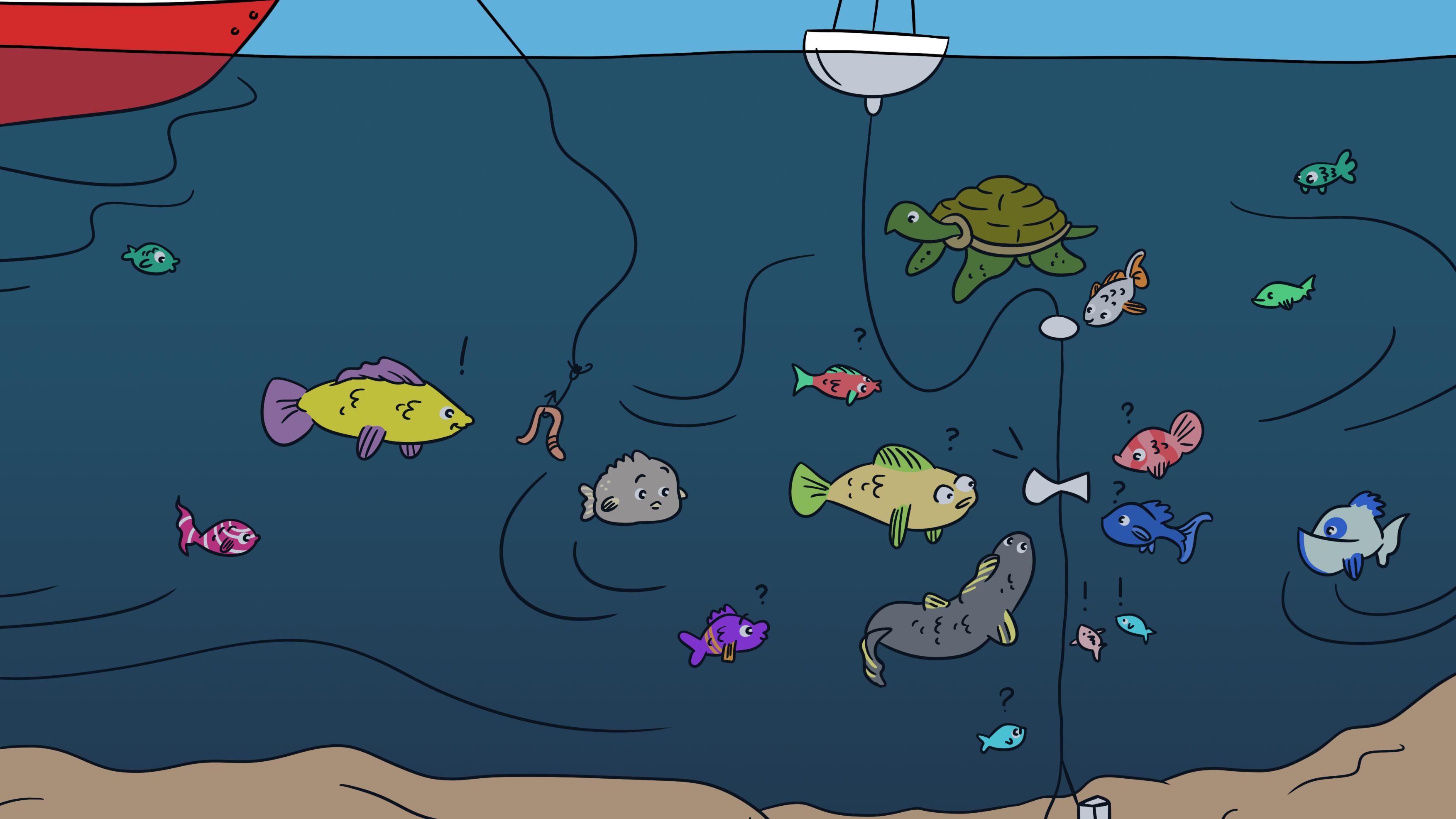 Ocean blog