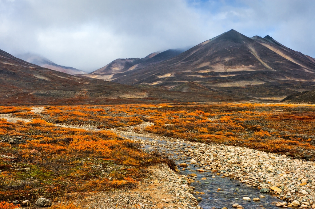 Image of East Siberian tundra, 97% of Earth's land area may no longer be ecologically intact, finds study in Frontiers in Forests and Global Change